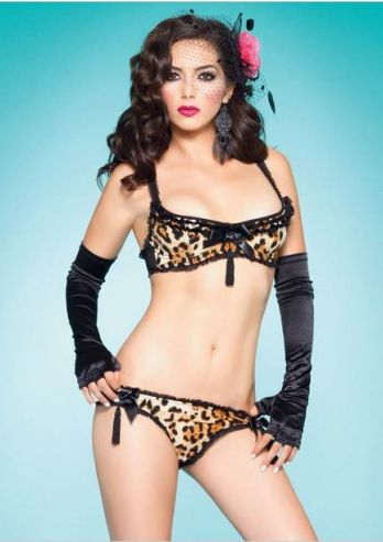 Frisky Kitty Lingerie